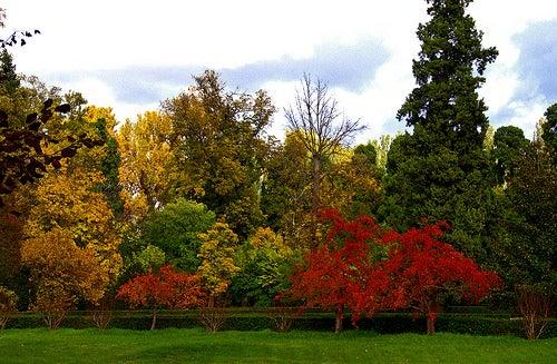 Jardines reales de aranjuez los jardines que inspiraron for Los jardines de aranjuez