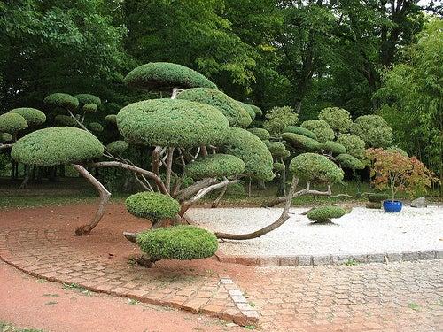 parque floral de la fuente 2