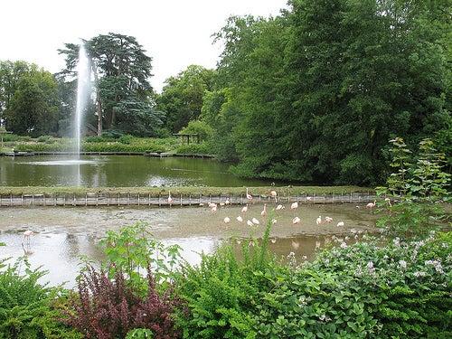 parque floral de la fuente 3