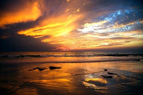 Playas de Australia 5