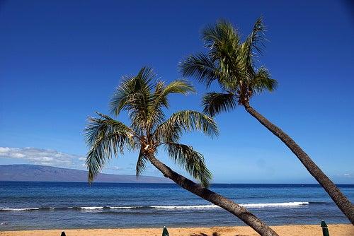 La fascinante isla de Maui en Hawái