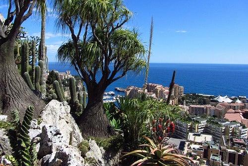 Los más bellos y espectaculares jardines del Principado de Mónaco