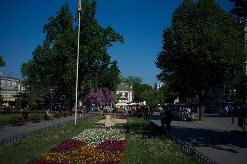 Odesa 3