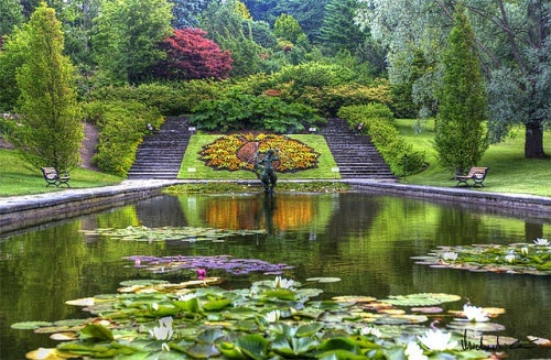 Acompáñanos en nuestra visita al Jardín Botánico de Gotemburgo en Suecia