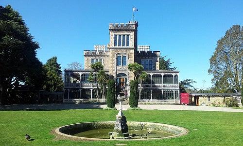 Dunedin 6