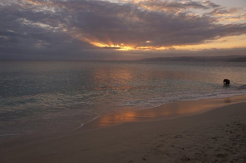 Playas de Samana 5