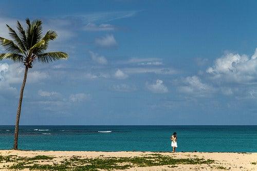 Playas de Samana 6