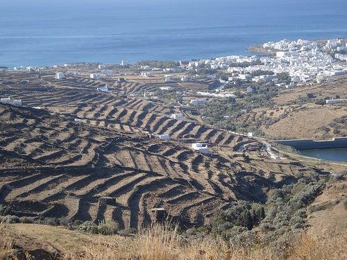 """Descubre con nosotros la isla griega de Tinos, """"la isla Sagrada"""""""