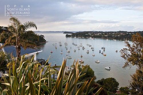 Disfrutemos de Paihia, uno de los recónditos y hermosos destinos de Nueva Zelanda