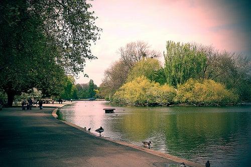 Regent's Park de Londres, un parque real para disfrutar y relajarte