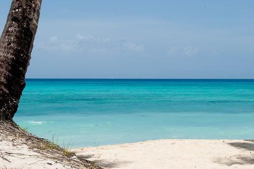 Bayahibe y Dominicus, algunos de los paraísos de República Dominicana