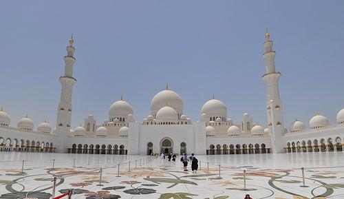 Sheikh Zayed 2