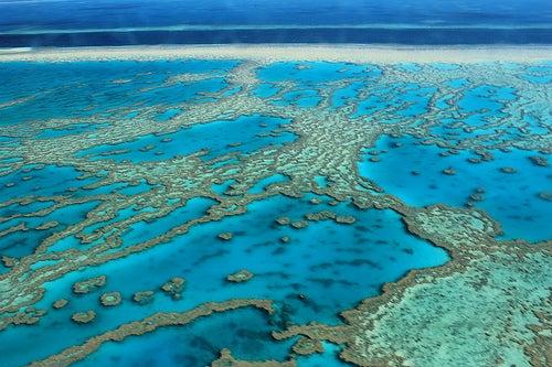 Admiremos el encanto de la Gran Barrera de Coral de Australia