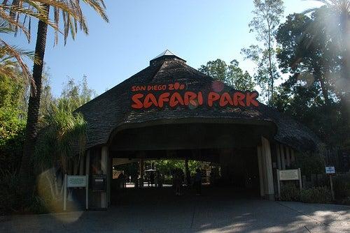 parques de San Diego 7