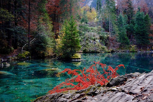 lago Blausee 3