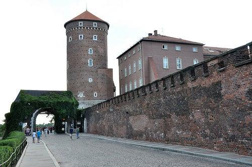 Castillo Wawel 5