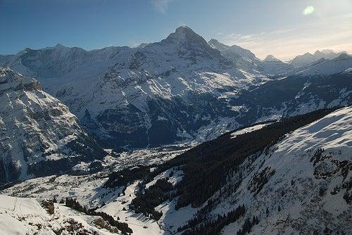 Grindelwald 5