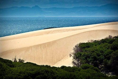 Bolonia, una de las mejores playas de españa