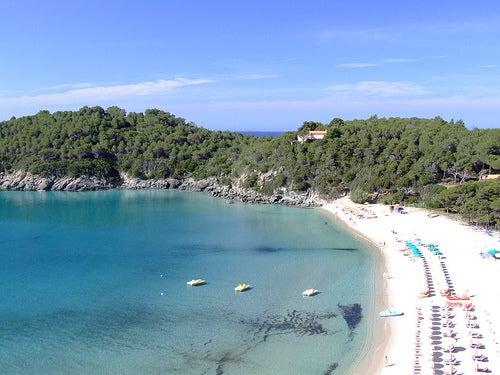 Descubre la playa de Fetovaia en la isla de Elba