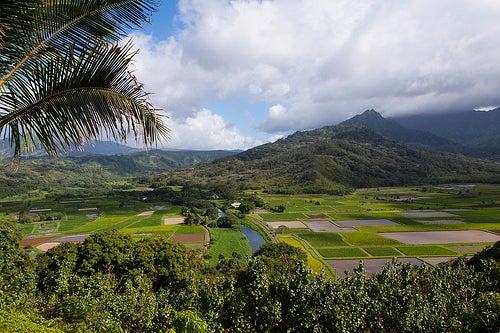 Kauai 2