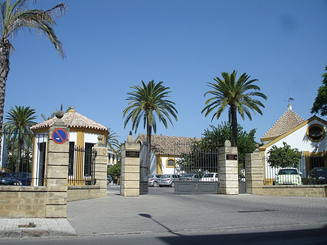 escuela real ecuestre caballos andaluces