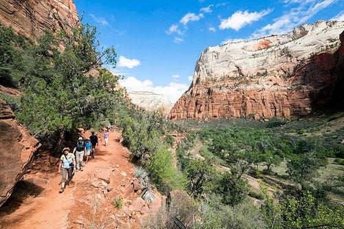 Parque Nacional Zion 3