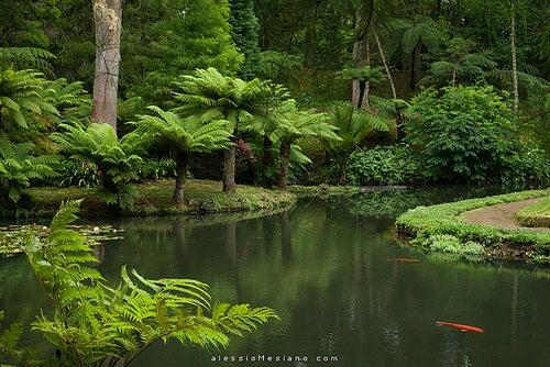 terra nostra garden 2