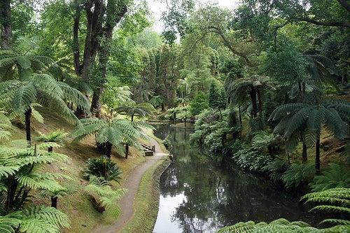 terra nostra garden 7