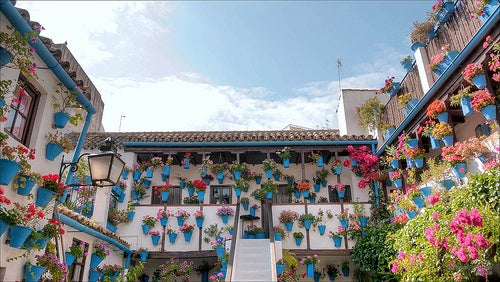 """El Festival Internacional de los Patios de Córdoba, España, """"el arte hecho en flor"""""""
