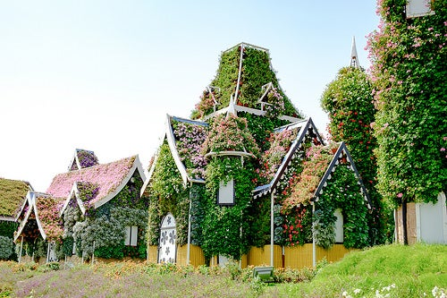 Miracle Garden 2