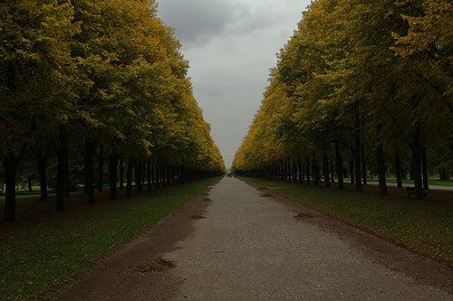 jardines de Alemania 7