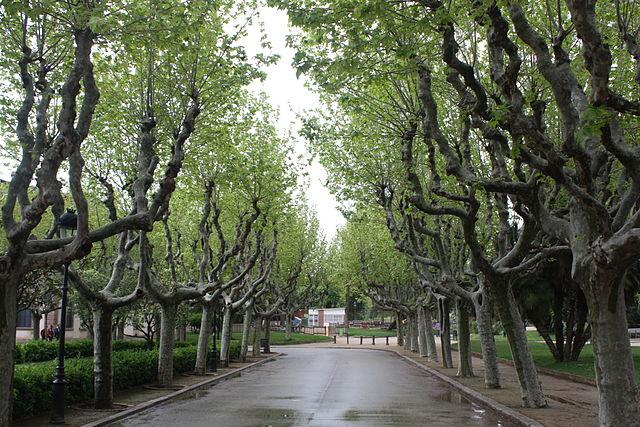 parque de la ciudadela 3