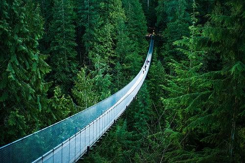 Los 5 puentes más interesantes del mundo