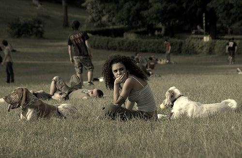 viajar-con-tu-perro-3
