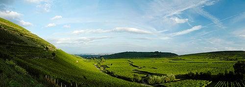 ruta-del-vino-en-francia-4