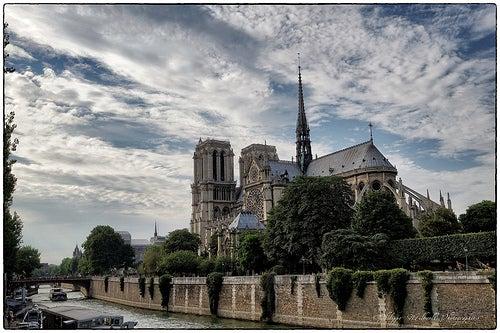 curiosidades-de-la-catedral-de-notre-dame-2