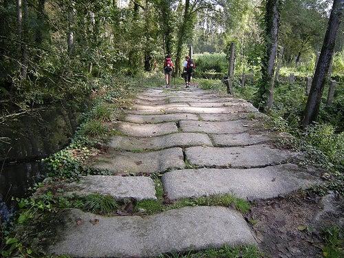 Las rutas del Camino de Santiago