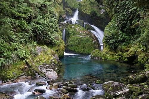 parque-nacional-fiordland-4