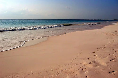 Playa rosa en las bahamas