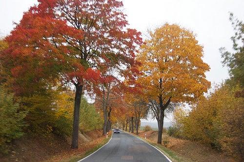 Carreteras más hermosas de europa 2