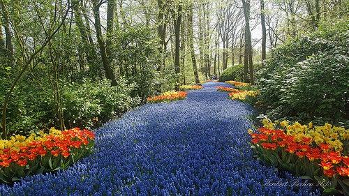 Primavera en europa 2